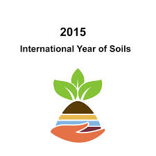 int year of soil