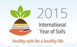 int-year-of-soil 2
